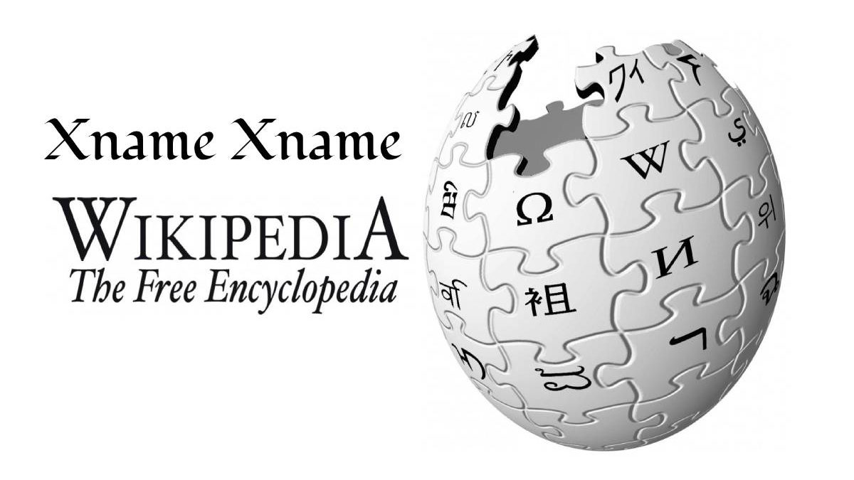 What is Xname Xname Wikipedia? – Funding, Politics, and Domain Authority