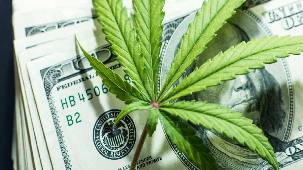 What to Know About Marijuana Stocks for the End of 2020